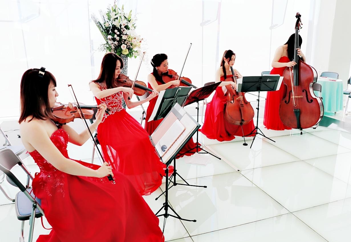 バイオリン、ビオラ、チェロ、コントラバスの五重奏の演奏