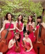 【演奏依頼事例】NISSAN 様イベント出演で 歴代 CM ソングをアレンジ/演奏「フェリスカルテット」