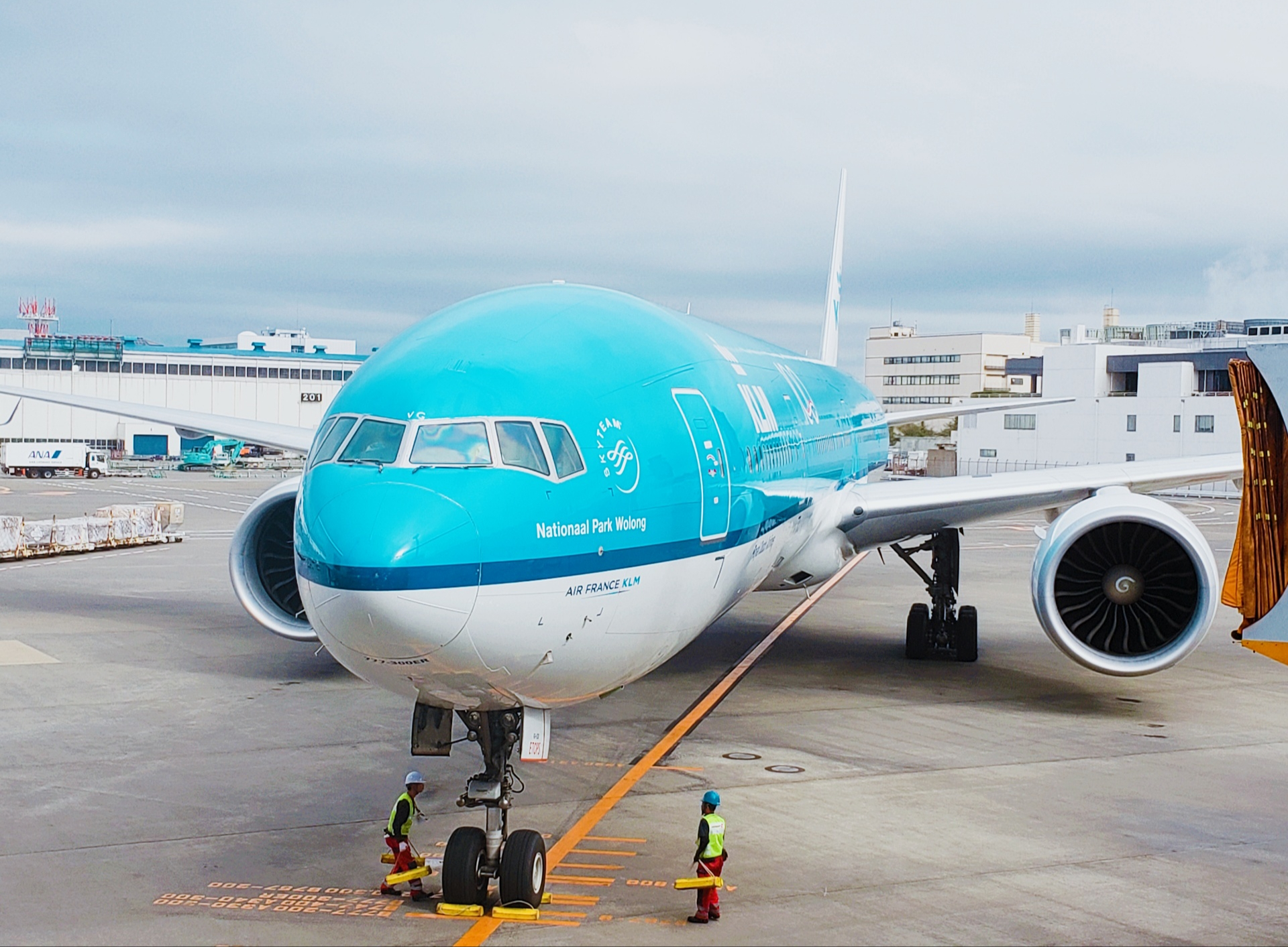成田空港 の飛行機